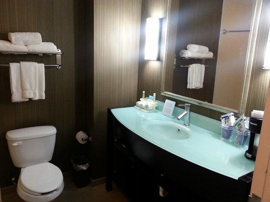 Holiday Inn Express Hotel & Suites West Coxsackie: Salle de bain