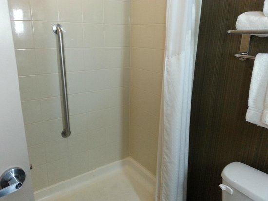 Holiday Inn Express Hotel & Suites West Coxsackie : Salle de bain