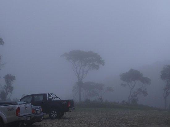 Guaramiranga, CE: manhã com neblina