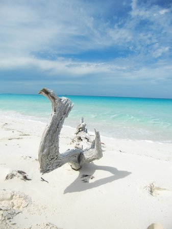 Exuma Cays Land and Sea Park : Paradise is Here