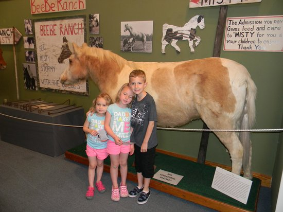 Museum of Chincoteague: Finally got to see Misty