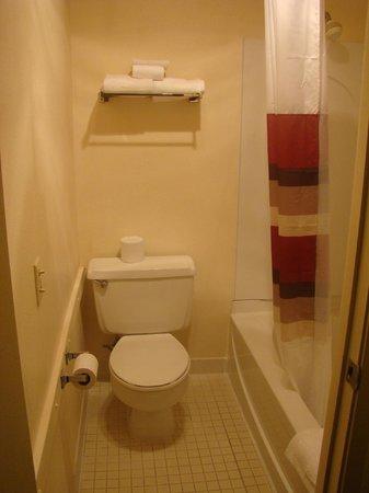 Red Roof Inn : Bathroom