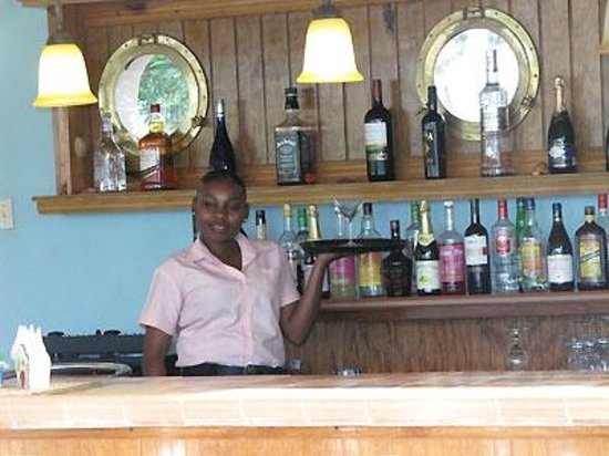 Tropical Lagoon Resort: The Bar