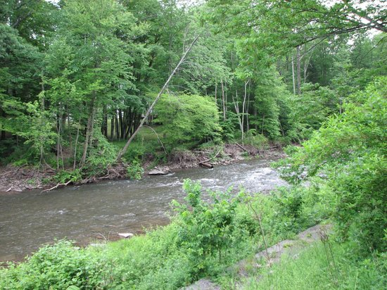 Weyside Inn and Cottages: stream running on property line