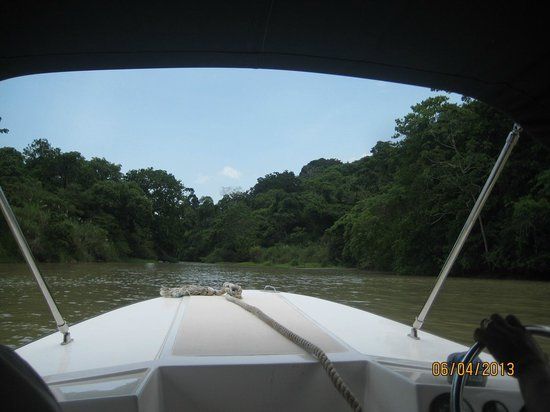 Gamboa Rainforest Resort Monkey Island Tour: Gatun Lake