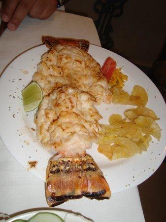 Malanga Frita - Picture of Dona Eutimia, Havana - TripAdvisor