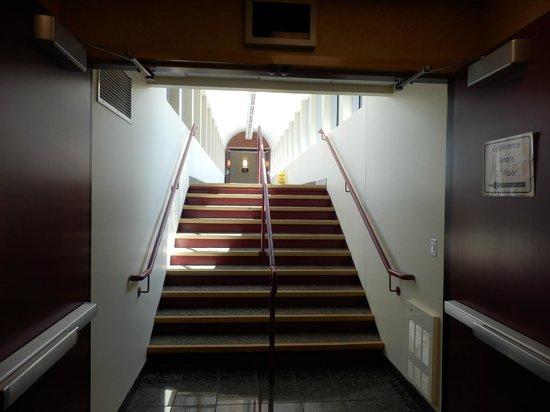 Hampton Inn by Hilton Ottawa : The hallway the conect the Hampton Inn & the Marriot together.