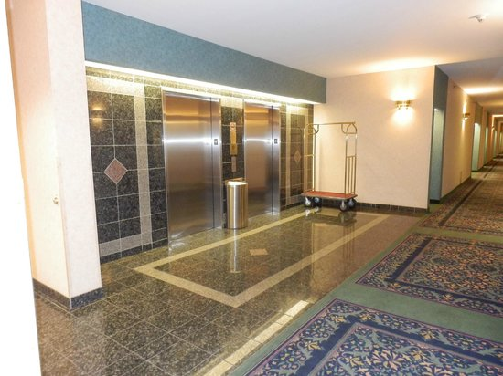 Hampton Inn by Hilton Ottawa: Hotel Elevators & Hall. We loved the interior of the hotel very much