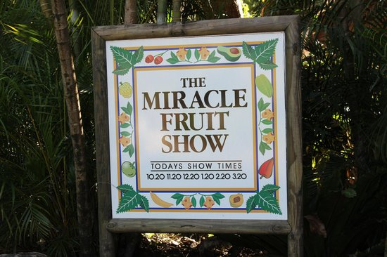 Tropical Fruit World: The Fruit Show with Fruit Tasting Session