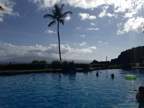 Sheraton Maui Resort & Spa: Sheraton Maui Pool