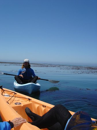 Kayak Outfitters: Cubby our guide