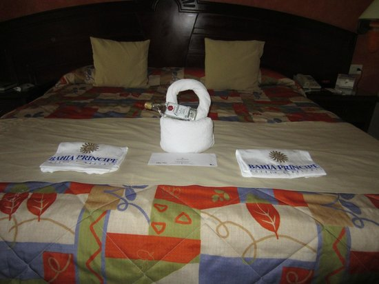 Grand Bahia Principe Coba: Our welcome - a towel animal, a bottle of tequila and free t-shirts.