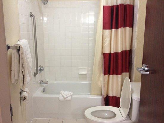 SpringHill Suites Minneapolis - St. Paul Airport / Eagan : Bathroom
