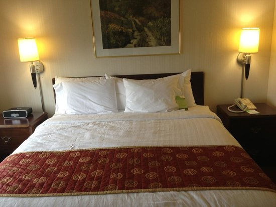 SpringHill Suites Minneapolis-St. Paul Airport/Eagan : King Bed
