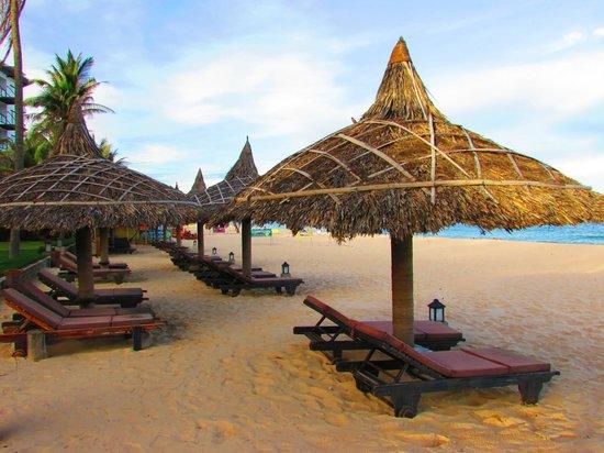 The Beach Resort : Beach