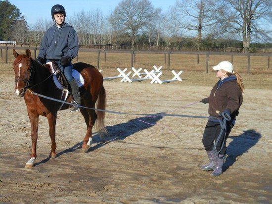 Lothair Retreat : Horse Riding Lessons nearby