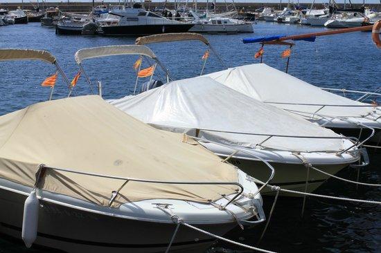 Renteolo: Unes de les nostres embarcacions