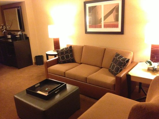 Embassy Suites by Hilton Chicago Downtown: Living Room