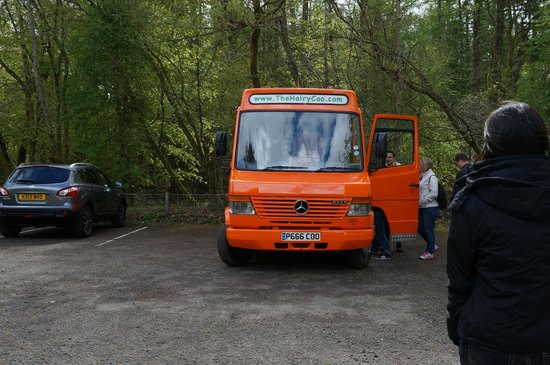 The Hairy Coo - Free Scottish Highlands Tour: The Hairy Coo bus