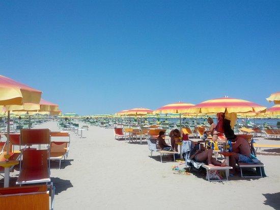 Bagno 39 Cigno : spiaggia