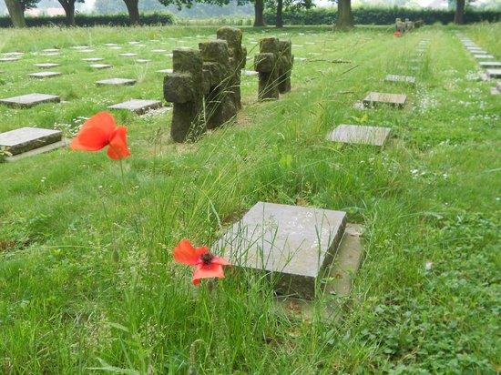 Hooglede, Bélgica: Quelques coquelicots parmi les tombes