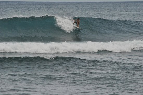 Bamboo Garden Bar and Lodging: Pacifico surf