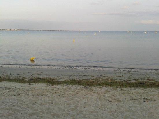 Le Cap Coz : Les pieds dans l'eau....