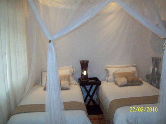 Damfela Eco Lodge: Pine room