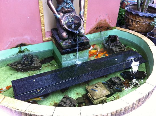 Club One Seven Phuket: Little fountain with fish near plunge pool