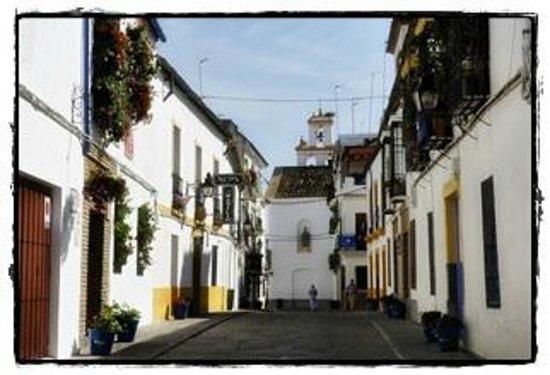 Los Patios del Alcazar Viejo : Los Patios del Alcázar Viejo