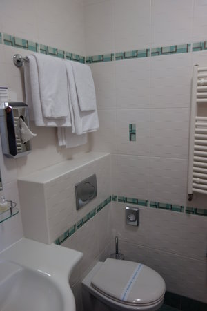 BEST WESTERN PLUS Hotel Meteor Plaza: Bathroom