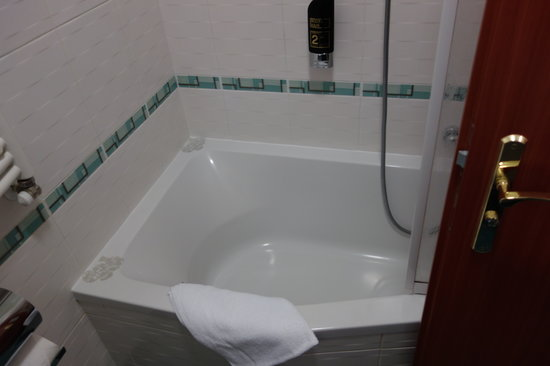 BEST WESTERN PLUS Hotel Meteor Plaza: Bath/Shower