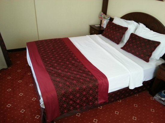 Gulhane Park Hotel: Daily cleaning services