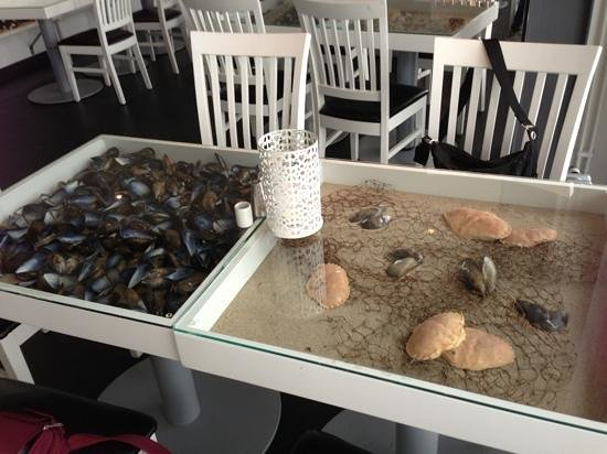 Buhres pa Kivik : box frame tables filled with sand and shells