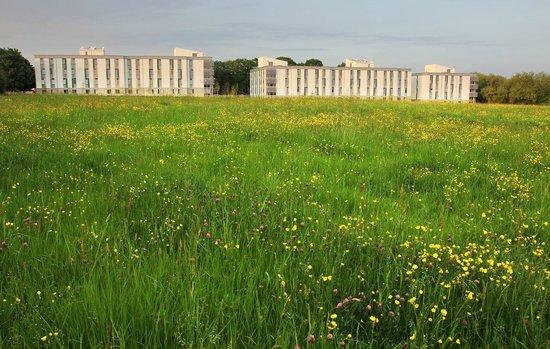 University of Kent: flats at Keynes College