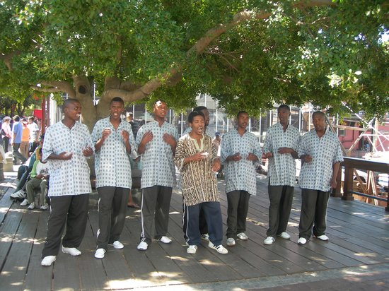 Chandelier Game Lodge & Ostrich Show Farm : Cape Town Singers