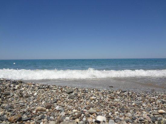 Aquila Rithymna Beach Reviews