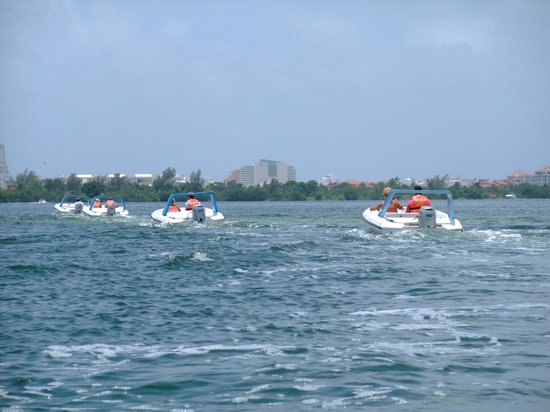 Dolphin Discovery: line of boats