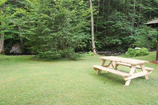 Rustic Log Cabins : Cabin 2 yard
