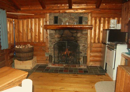 Rustic Log Cabins : Cabin 5 fireplace