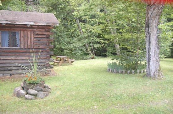 Rustic Log Cabins : Cabin 5 yard