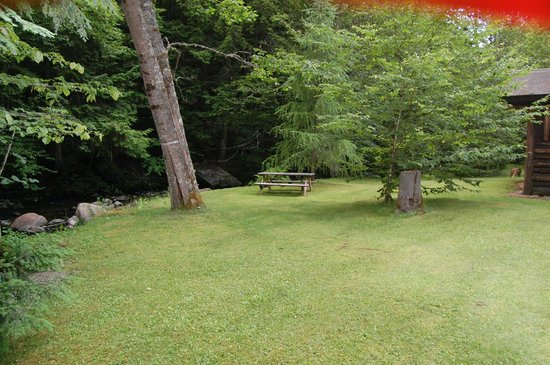 Rustic Log Cabins : Cabin 1 yard
