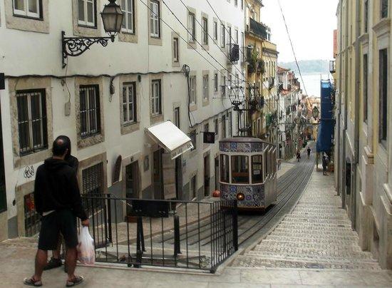 Lisbon Tram & Funicular Network : Elevador da Bica