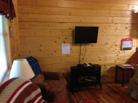 Cosby Creek Cabins: Cosby Coca Cola Cabin - TV