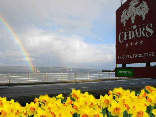 The Cedars Guest House: Beautiful rainbows