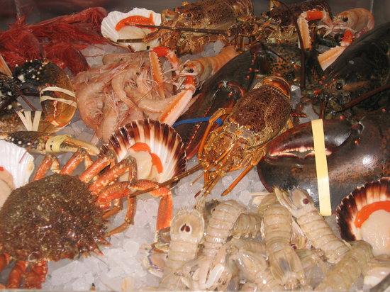 Le Ancore della Bastia: vetrina del pesce