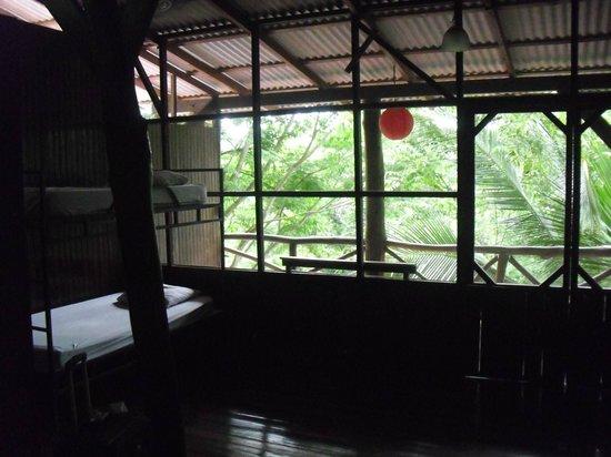 Hostel Plinio: room