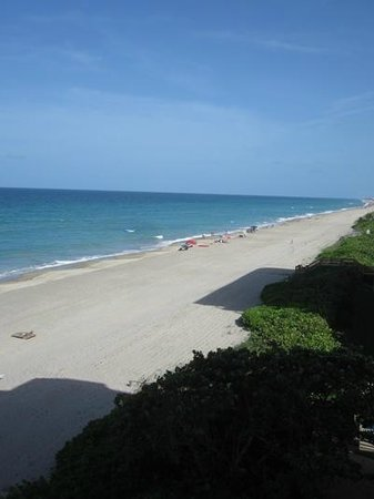 Courtyard Hutchinson Island Oceanside/Jensen Beach: Beach right outside the back door.  View from the balcony.  NICE!