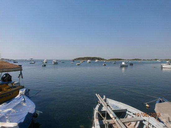 B & B Solemar: Porto Cesareo- il porto