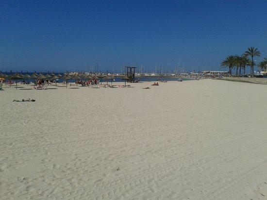 Hotel Amic Gala: beach around the corner